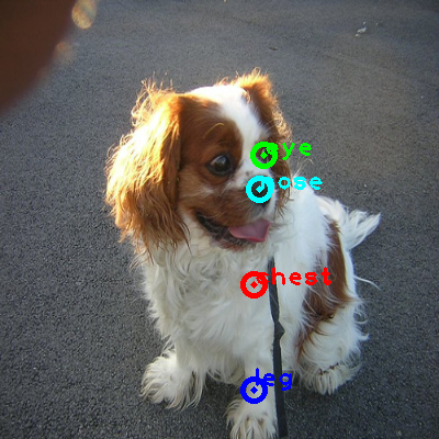 2010_000072-dog_0_ppm10.png