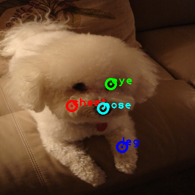 2010_000422-dog_0_ppm10.png
