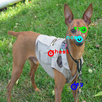 2010_000608-dog_0_ppm10.png
