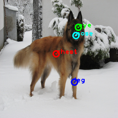 2010_000626-dog_0_ppm10.png