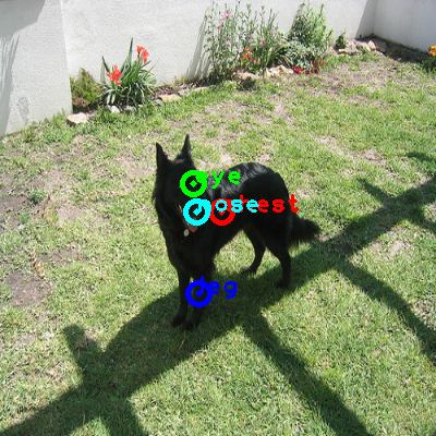 2010_000644-dog_0_ppm10.png