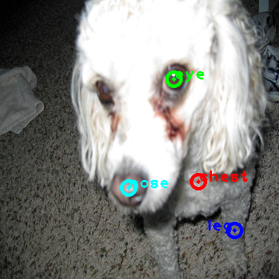 2010_000785-dog_0_ppm10.png
