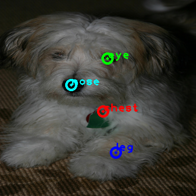 2010_000846-dog_0_ppm10.png