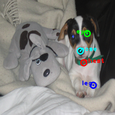 2010_000870-dog_0_ppm10.png