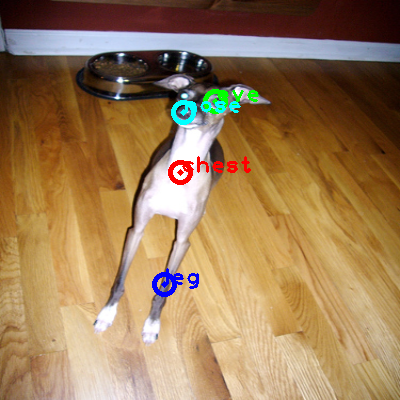 2010_000889-dog_0_ppm10.png