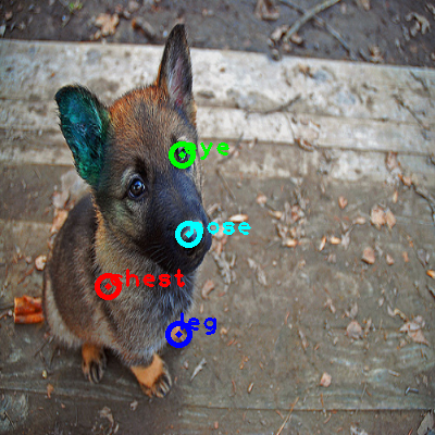 2010_001273-dog_0_ppm10.png