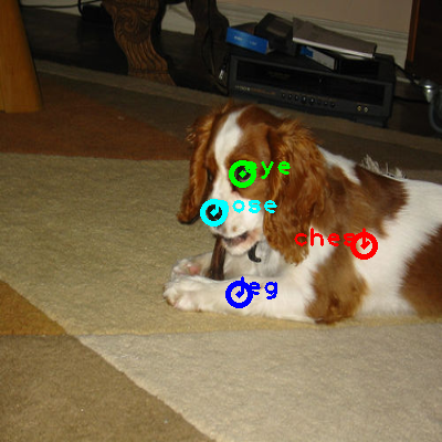 2010_001425-dog_0_ppm10.png