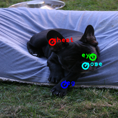 2010_001450-dog_0_ppm10.png