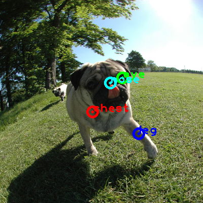 2010_001497-dog_0_ppm10.png
