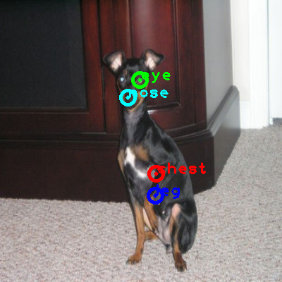 2010_001601-dog_0_ppm10.png