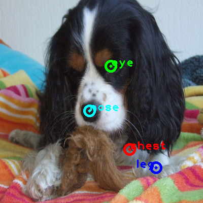 2010_001633-dog_0_ppm10.png