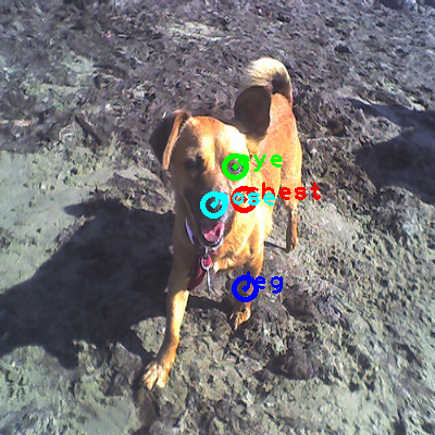 2010_001665-dog_0_ppm10.png
