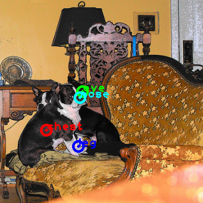 2010_001726-dog_0_ppm10.png