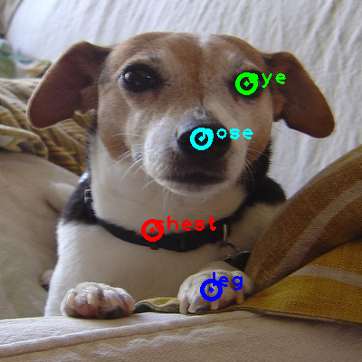 2010_001760-dog_0_ppm10.png