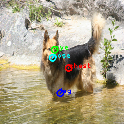 2010_001869-dog_0_ppm10.png
