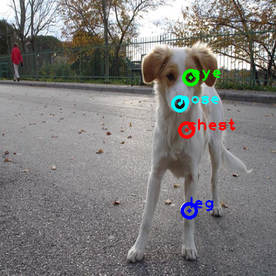 2010_001908-dog_0_ppm10.png