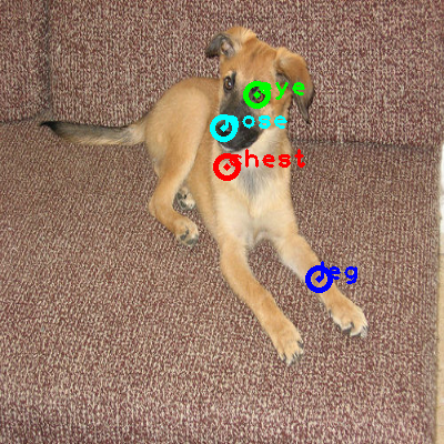 2010_001933-dog_0_ppm10.png