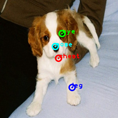 2010_002029-dog_0_ppm10.png