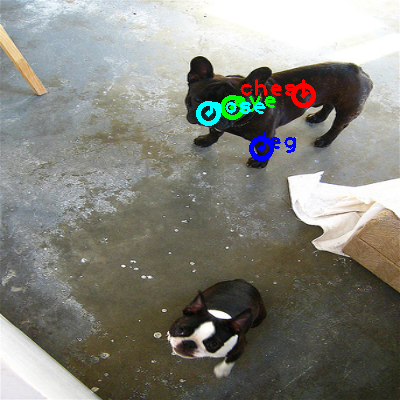 2010_002089-dog_0_ppm10.png