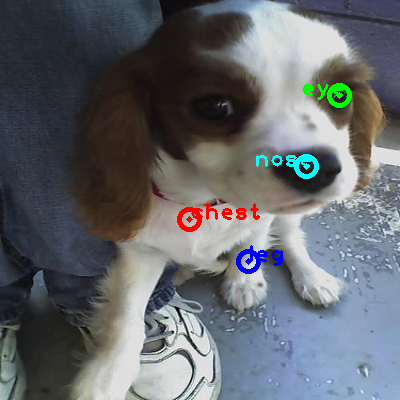 2010_002220-dog_0_ppm10.png