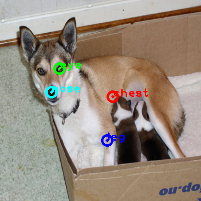 2010_002399-dog_0_ppm10.png