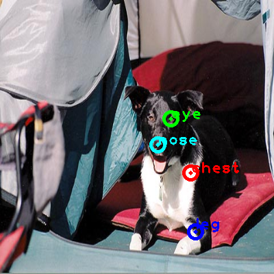 2010_002580-dog_0_ppm10.png