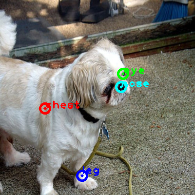 2010_002589-dog_0_ppm10.png