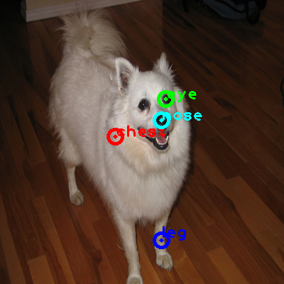 2010_002616-dog_0_ppm10.png