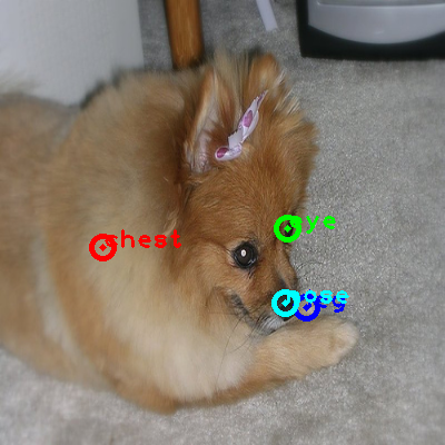 2010_002654-dog_0_ppm10.png