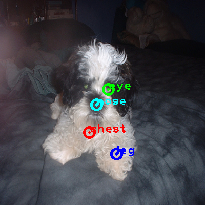 2010_002901-dog_0_ppm10.png