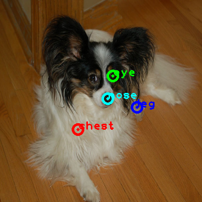 2010_002938-dog_0_ppm10.png