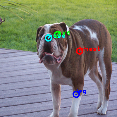 2010_003222-dog_0_ppm10.png