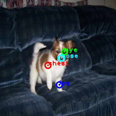 2010_003331-dog_0_ppm10.png