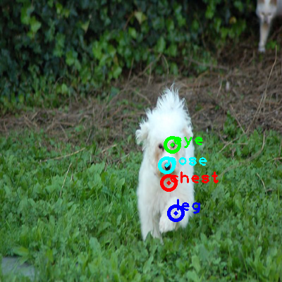 2010_003337-dog_0_ppm10.png