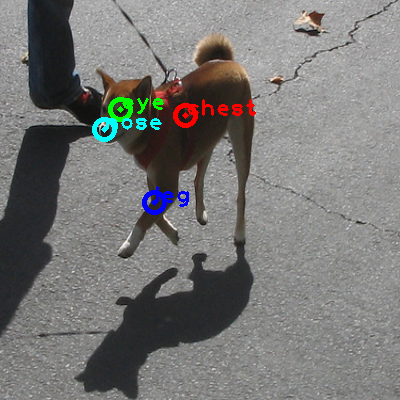 2010_003366-dog_0_ppm10.png