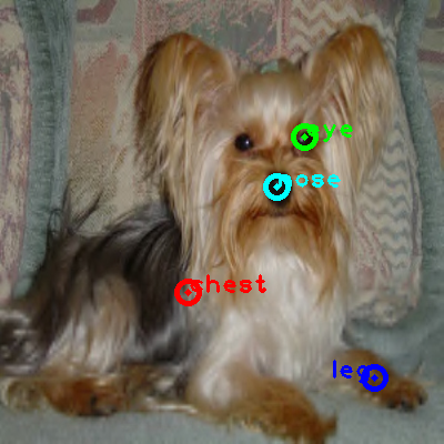 2010_003397-dog_0_ppm10.png