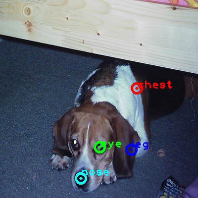 2010_003506-dog_0_ppm10.png