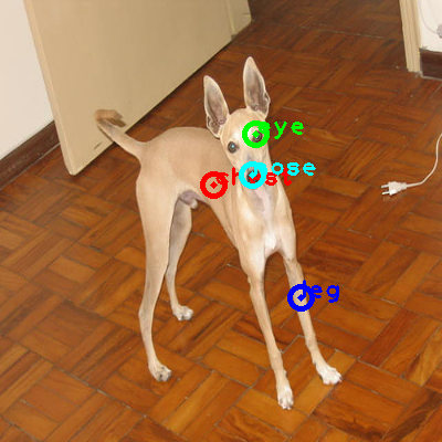 2010_003554-dog_0_ppm10.png