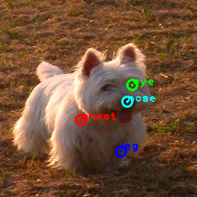 2010_003653-dog_0_ppm10.png