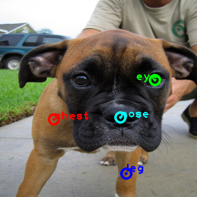 2010_003746-dog_0_ppm10.png