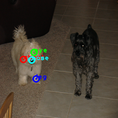 2010_003784-dog_0_ppm10.png