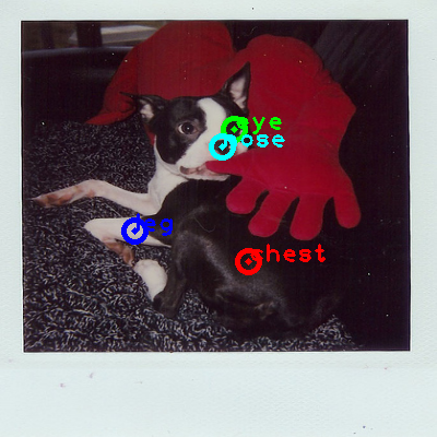 2010_003958-dog_0_ppm10.png