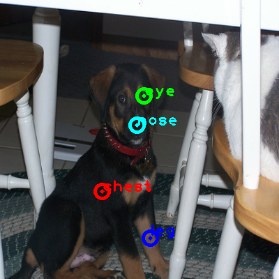 2010_004002-dog_0_ppm10.png