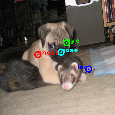2010_004011-dog_0_ppm10.png