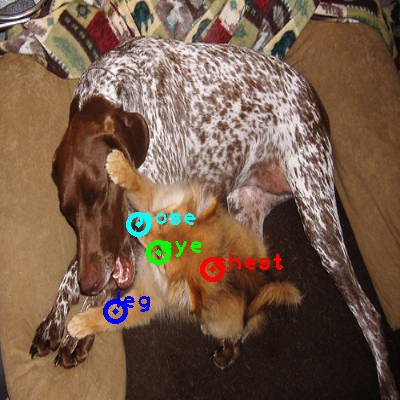 2010_004750-dog_0_ppm10.png