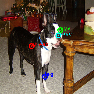 2010_004832-dog_0_ppm10.png