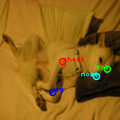 2010_004931-dog_0_ppm10.png