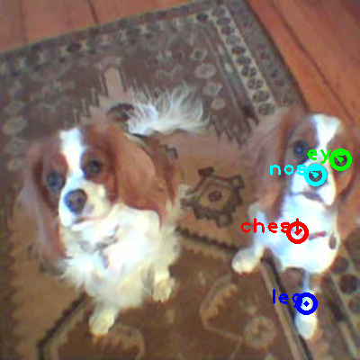 2010_005064-dog_1_ppm10.png