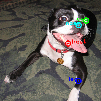 2010_005083-dog_0_ppm10.png