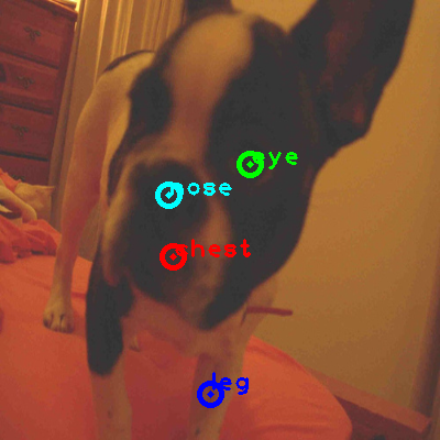2010_005246-dog_0_ppm10.png